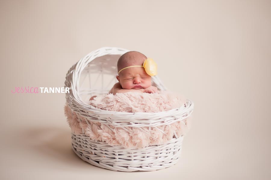 Jessica Tanner Photography Newborn