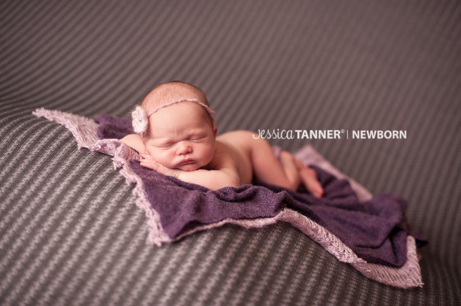 newborn photographer in gainesville ga