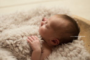 Elberton Ga Child Photographer Jessica Tanner Photography Atlanta GA (4)